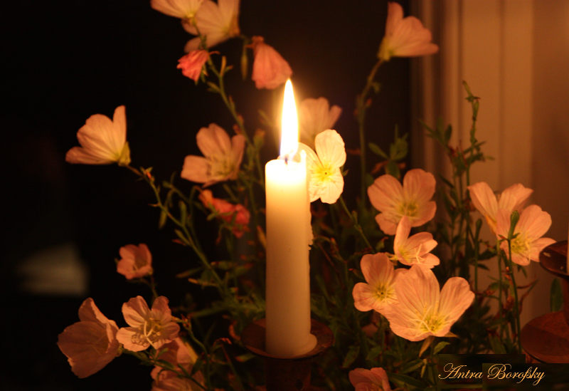 Valentine_Candle&Blossoms_IMG_4807_800px_4
